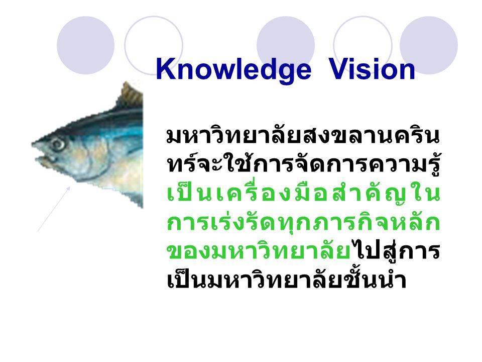Knowledge Vision