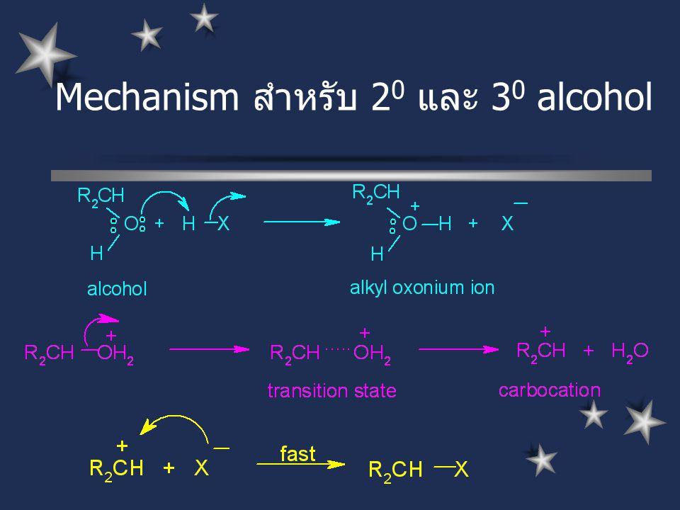 Mechanism สำหรับ 20 และ 30 alcohol