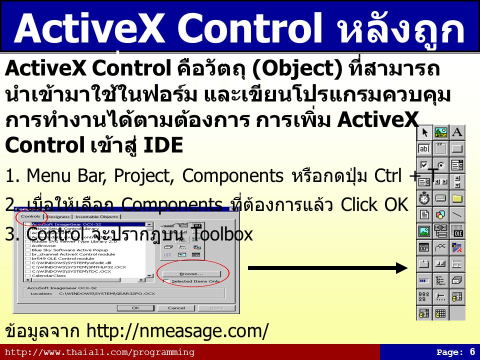 ActiveX Control หลังถูกเพิ่มเข้า Tool Box