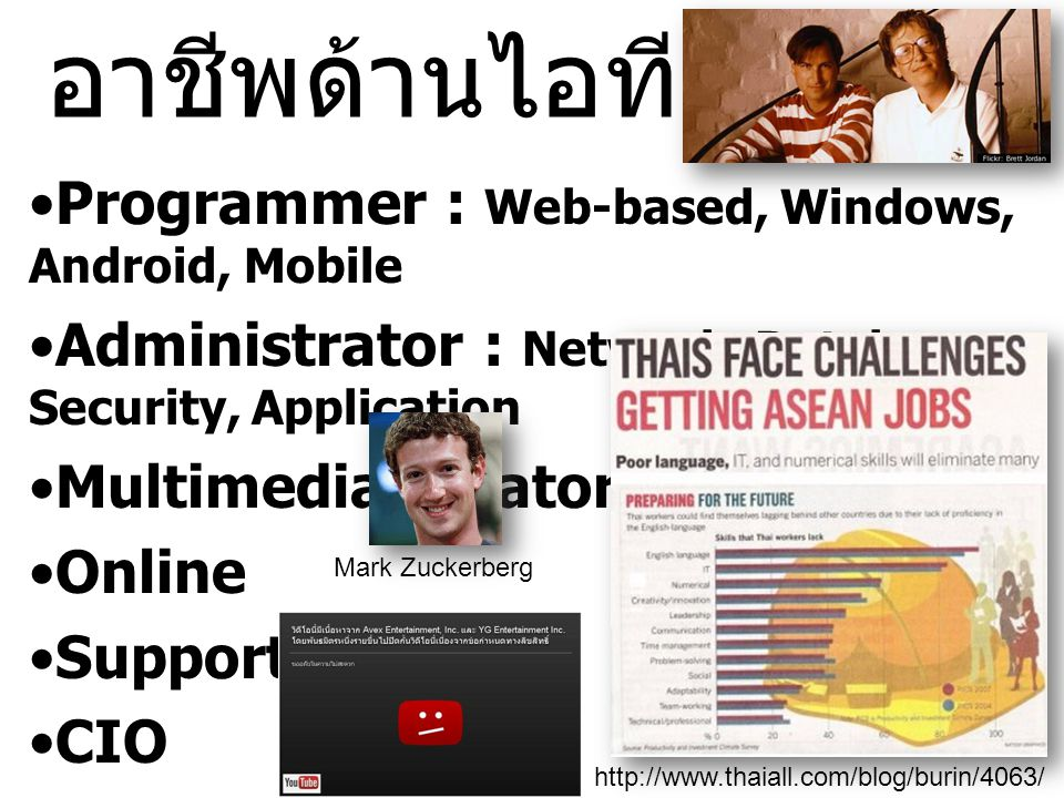 อาชีพด้านไอที Programmer : Web-based, Windows, Android, Mobile
