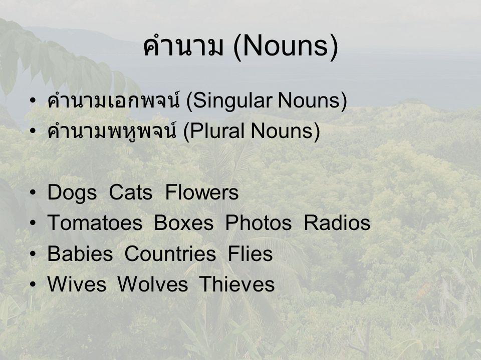 คำนาม (Nouns) คำนามเอกพจน์ (Singular Nouns)