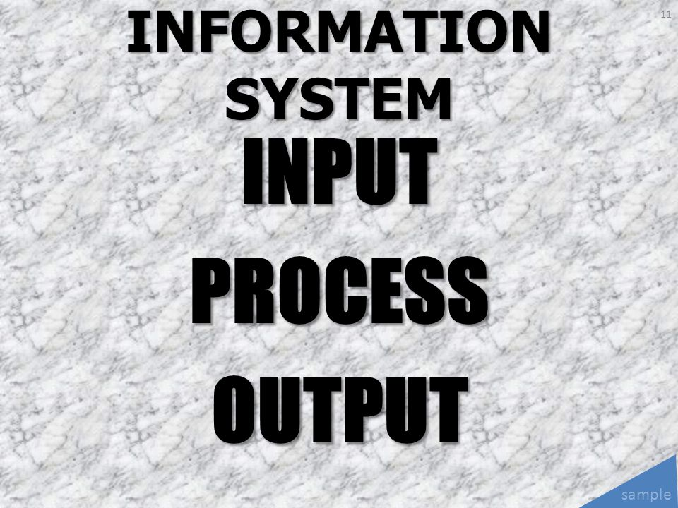 INFORMATION SYSTEM INPUT PROCESS OUTPUT sample
