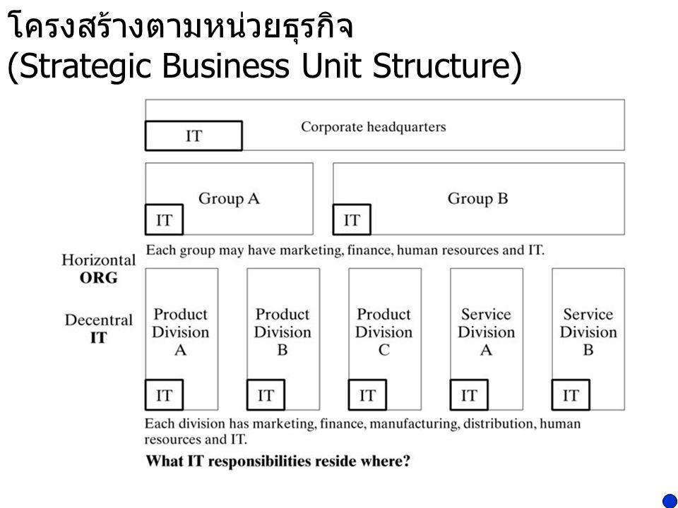 โครงสร้างตามหน่วยธุรกิจ (Strategic Business Unit Structure)