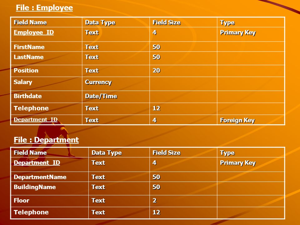 File : Employee File : Department Field Name Data Type Field Size Type