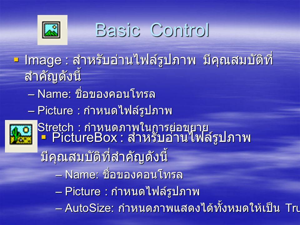 Basic Control Image : สำหรับอ่านไฟล์รูปภาพ มีคุณสมบัติที่สำคัญดังนี้