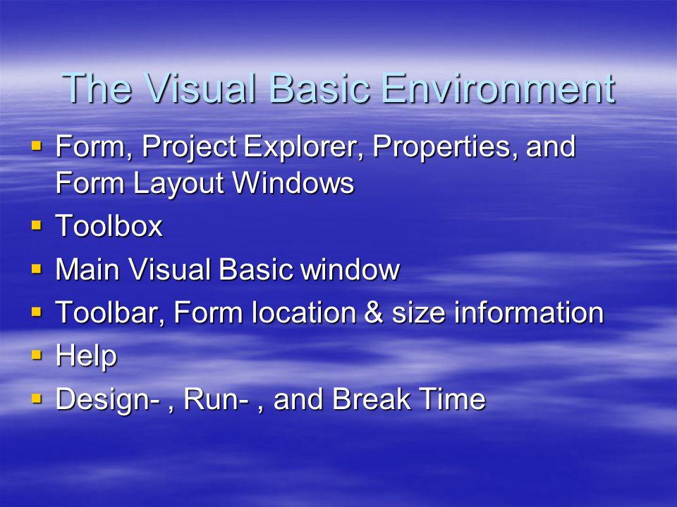 The Visual Basic Environment