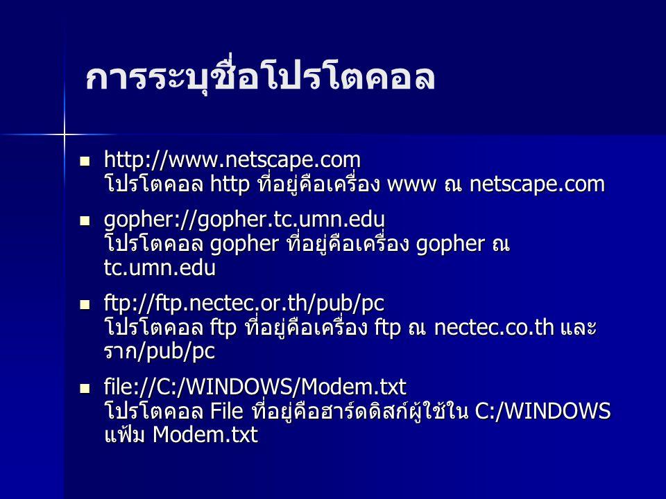 การระบุชื่อโปรโตคอล http://www.netscape.com โปรโตคอล http ที่อยู่คือเครื่อง www ณ netscape.com.