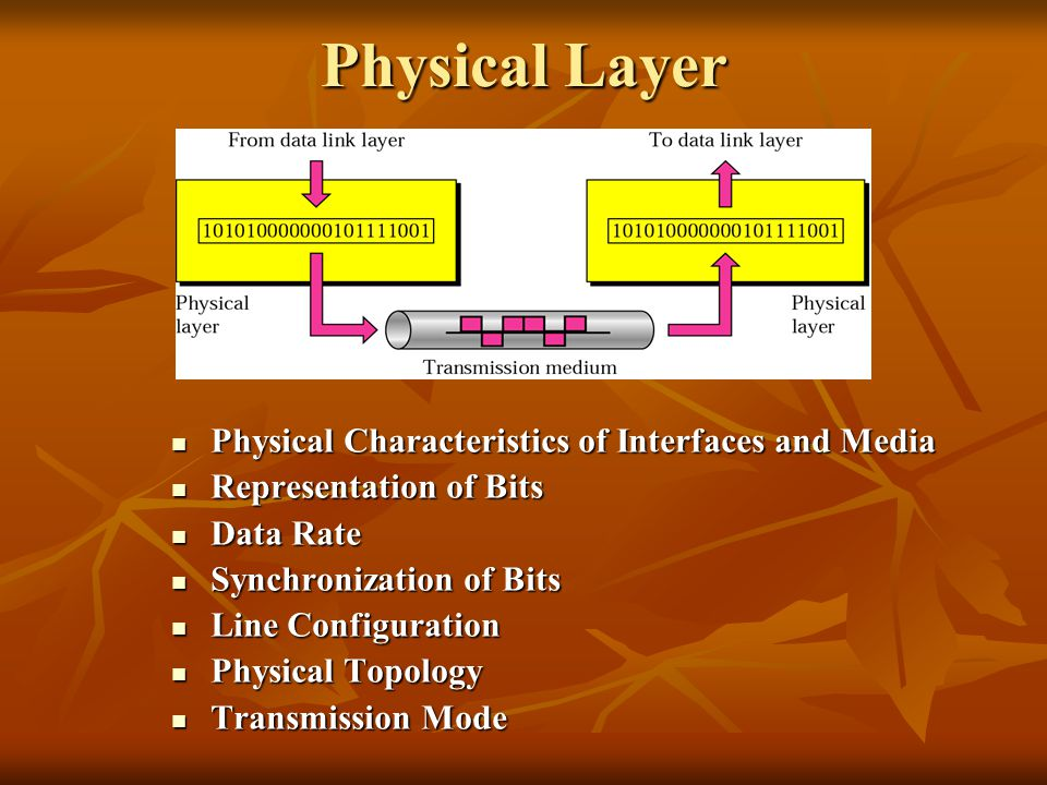 Physical Layer Physical Characteristics of Interfaces and Media