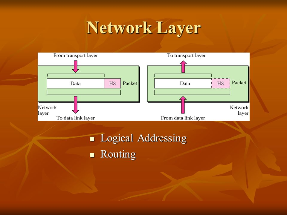 Network Layer Logical Addressing Routing