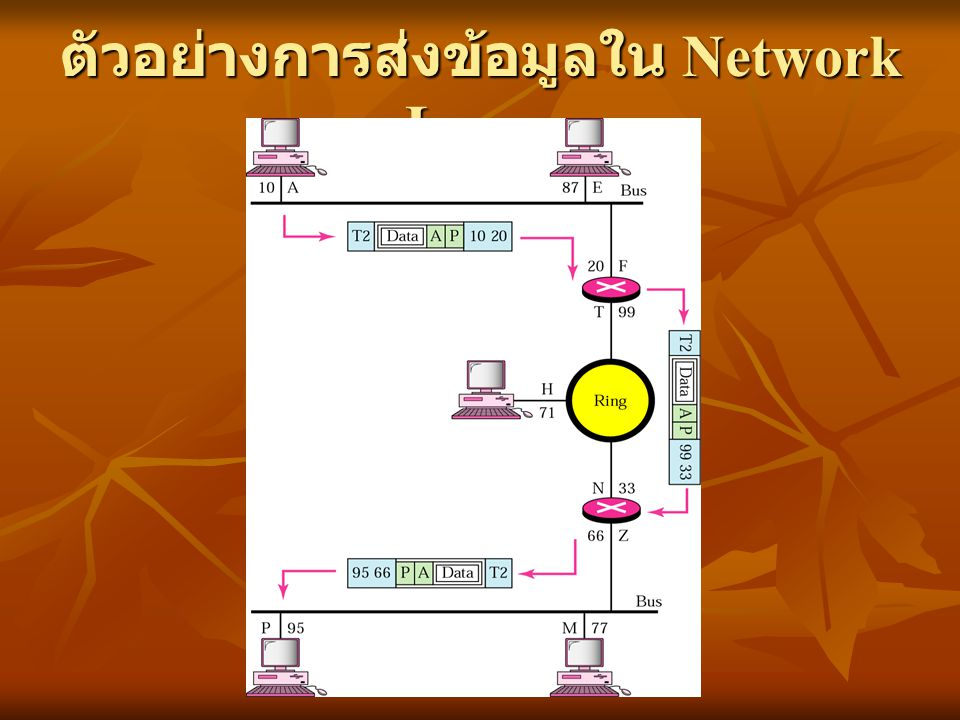 ตัวอย่างการส่งข้อมูลใน Network Layer