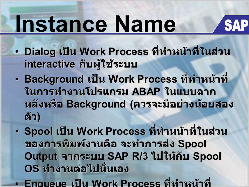 Instance Name SAP. Dialog เป็น Work Process ที่ทำหน้าที่ในส่วน interactive กับผู้ใช้ระบบ.