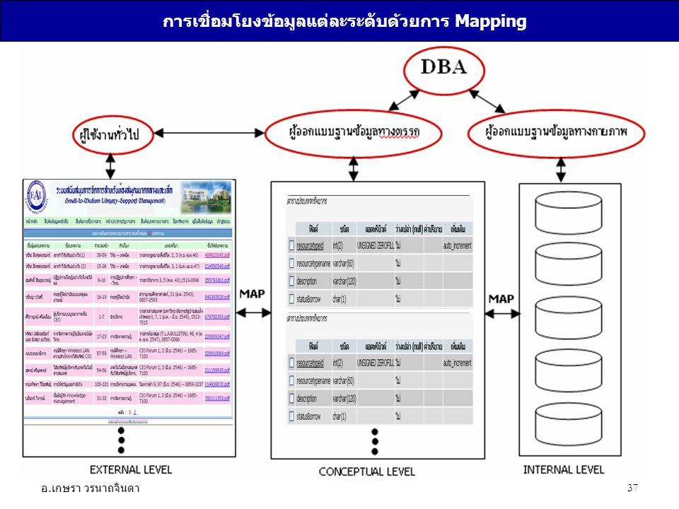 การเชื่อมโยงข้อมูลแต่ละระดับด้วยการ Mapping