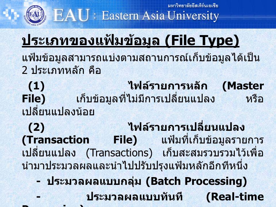 ประเภทของแฟ้มข้อมูล (File Type)