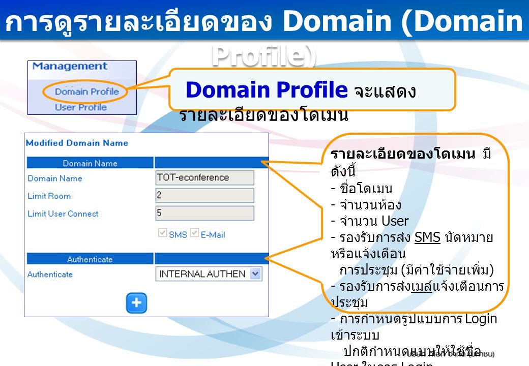 การดูรายละเอียดของ Domain (Domain Profile)
