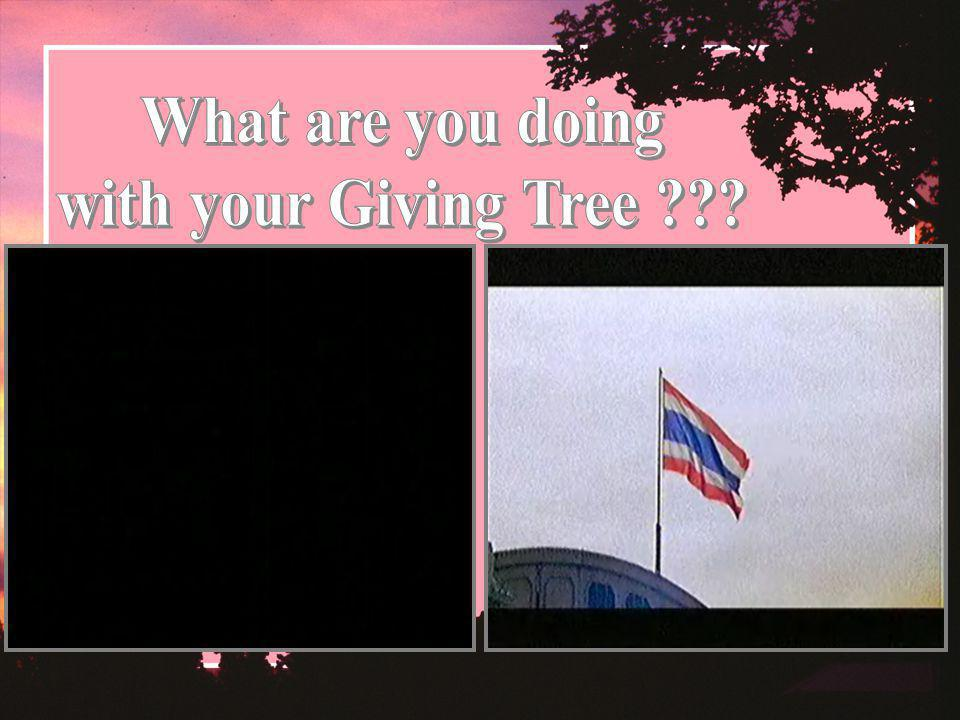 What are you doing with your Giving Tree