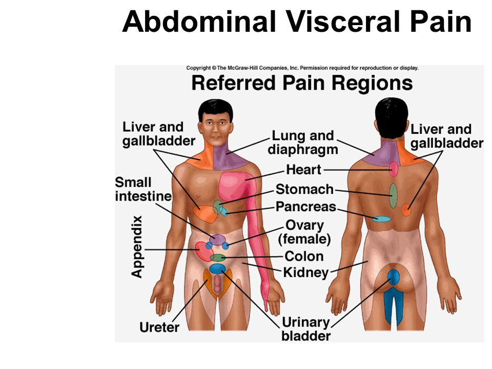 Abdominal Visceral Pain