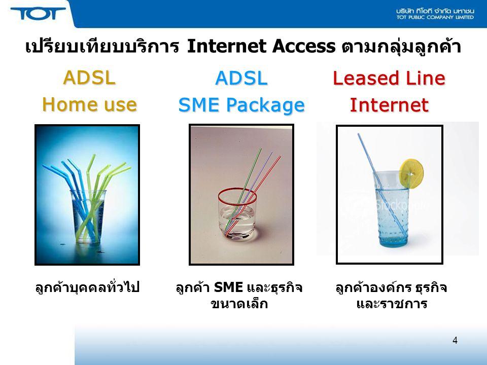 เปรียบเทียบบริการ Internet Access ตามกลุ่มลูกค้า