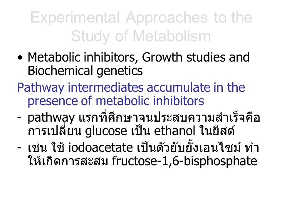 Experimental Approaches to the Study of Metabolism