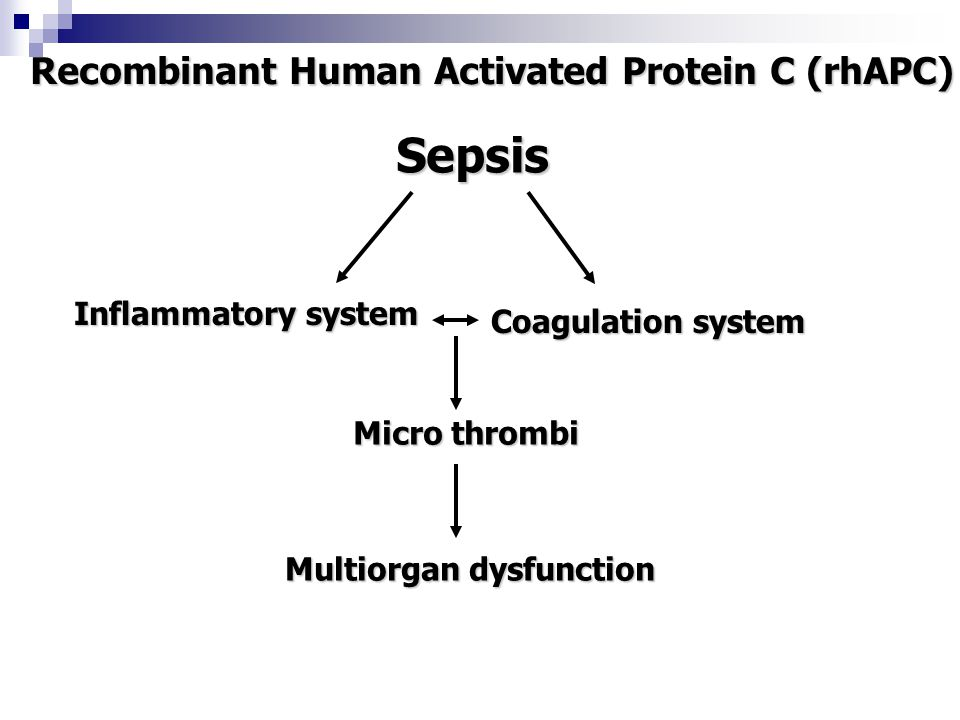 Recombinant Human Activated Protein C (rhAPC) Multiorgan dysfunction