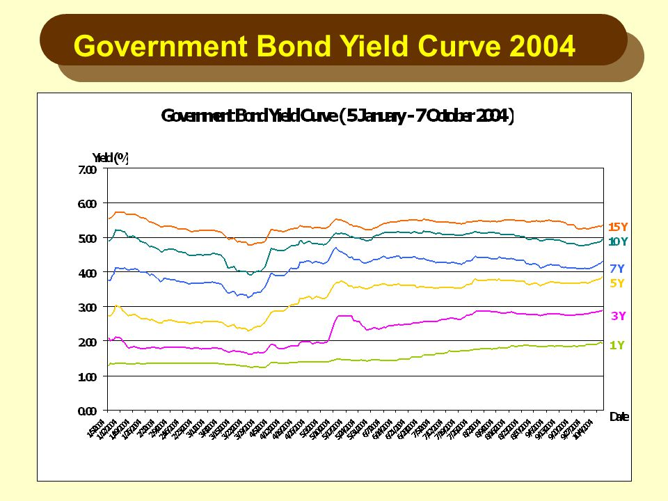 Government Bond Yield Curve 2004