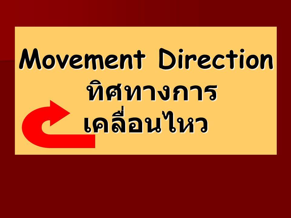 Movement Direction ทิศทางการเคลื่อนไหว