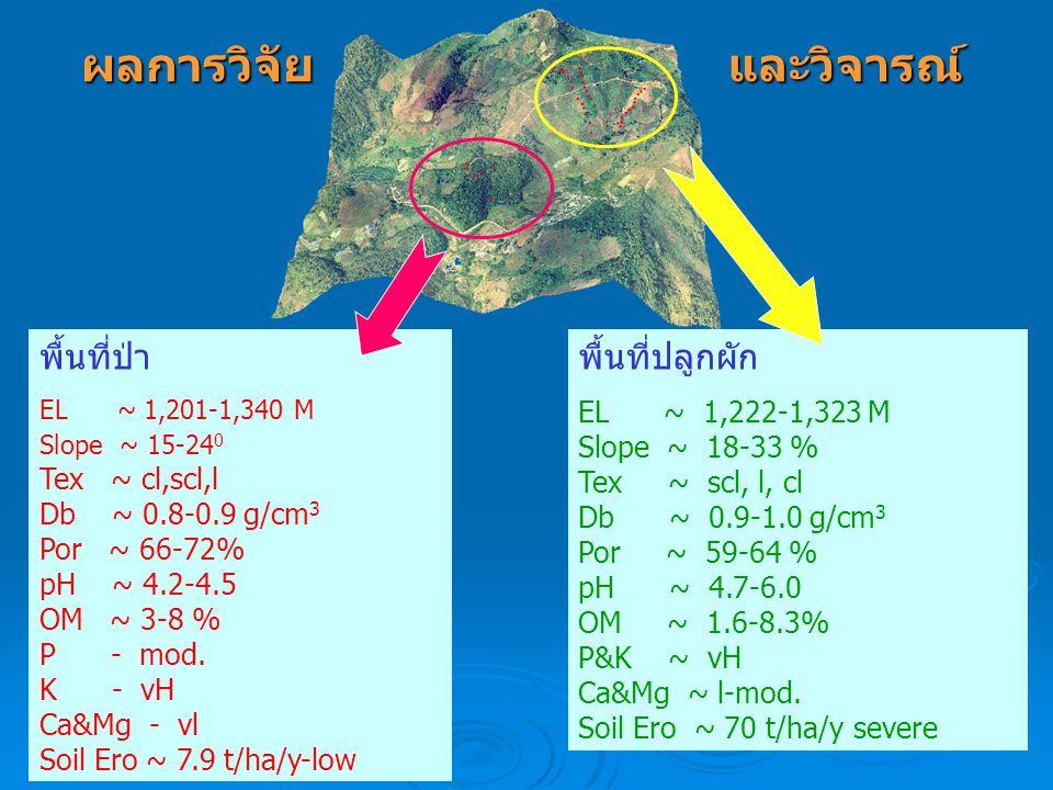 ผลการวิจัย และวิจารณ์ พื้นที่ป่า พื้นที่ปลูกผัก EL ~ 1,222-1,323 M