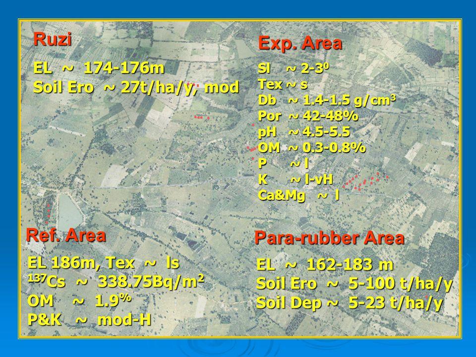 Ruzi Exp. Area Ref. Area Para-rubber Area EL ~ 174-176m