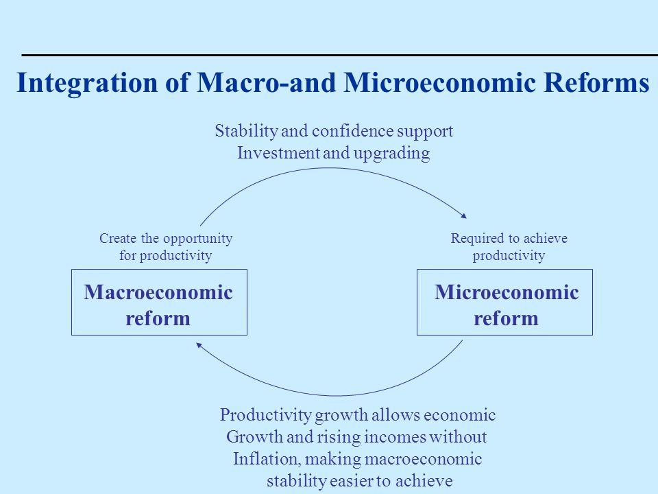 Integration of Macro-and Microeconomic Reforms