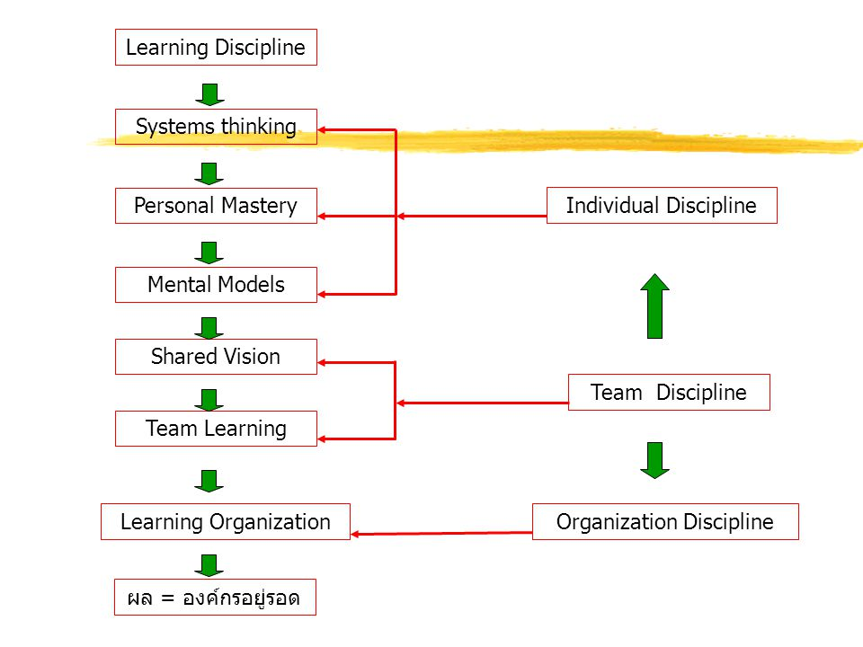 Individual Discipline