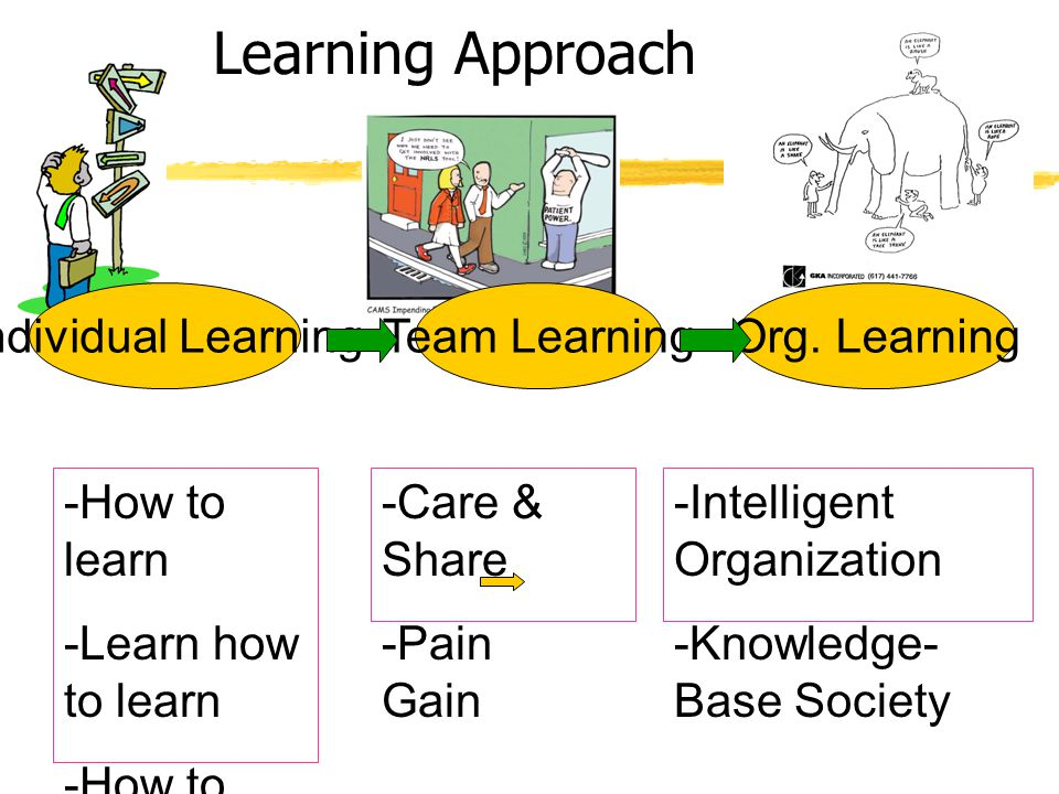 Learning Approach Individual Learning Team Learning Org. Learning