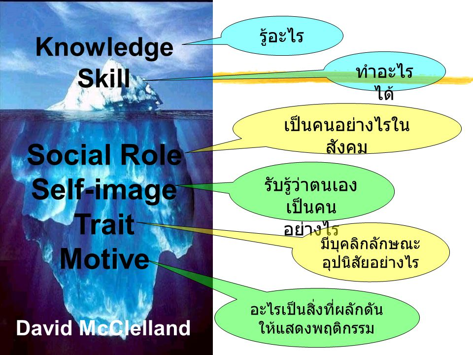 Social Role Self-image Trait Motive