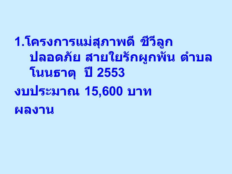 1.โครงการแม่สุภาพดี ชีวีลูกปลอดภัย สายใยรักผูกพัน ตำบลโนนธาตุ ปี 2553