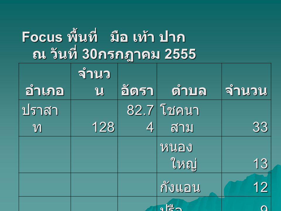 Focus พื้นที่ มือ เท้า ปาก ณ วันที่ 30กรกฎาคม 2555