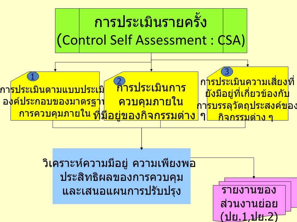 (Control Self Assessment : CSA)