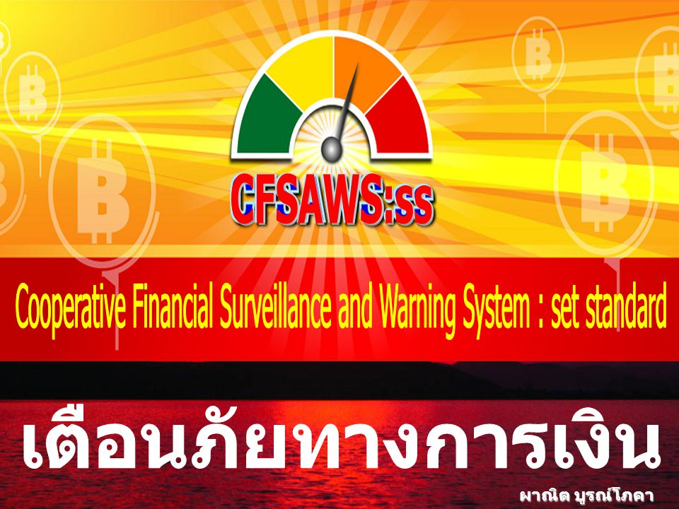 Cooperative Financial Surveillance and Warning System : set standard
