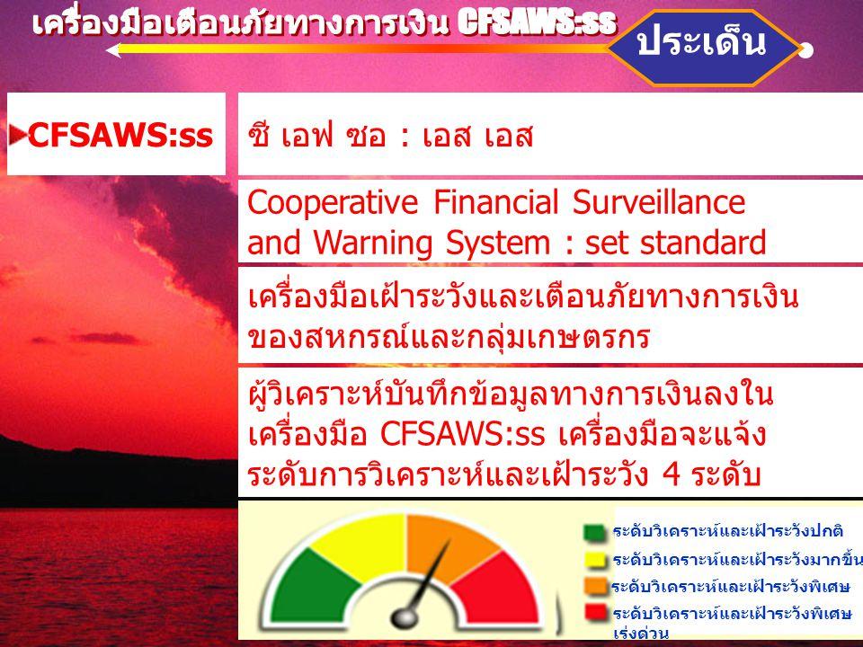 เครื่องมือเตือนภัยทางการเงิน CFSAWS:ss