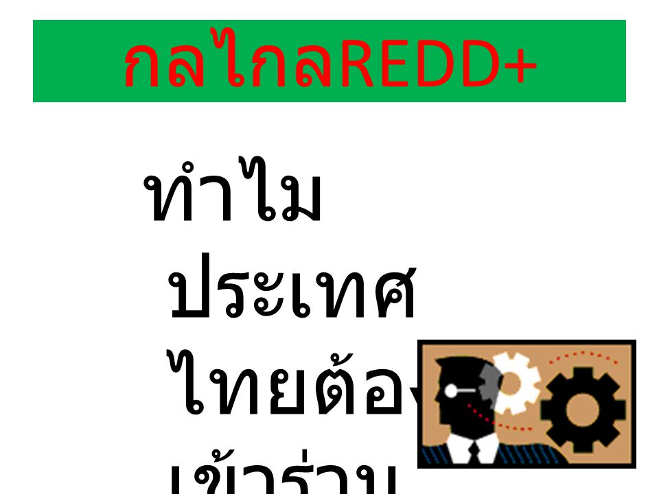 ทำไมประเทศไทยต้องเข้าร่วมกลไกREDD+
