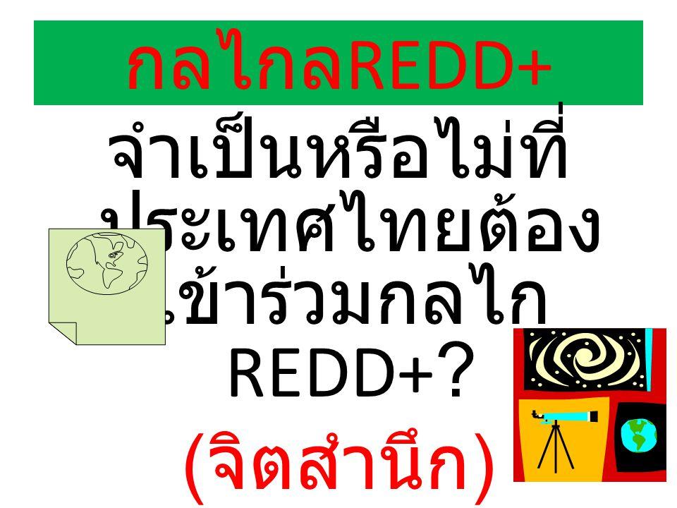 จำเป็นหรือไม่ที่ประเทศไทยต้องเข้าร่วมกลไกREDD+