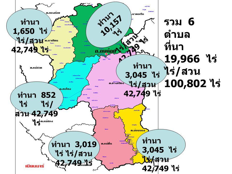 รวม 6 ตำบล ที่นา 19,966 ไร่ ไร่/สวน 100,802 ไร่