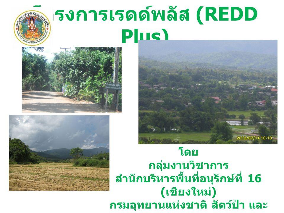 โครงการเรดด์พลัส (REDD Plus)