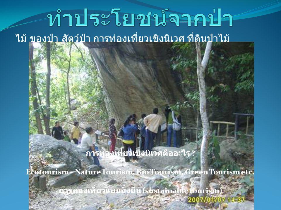 การท่องเที่ยวแบบยั่งยืน (sustainable tourism)