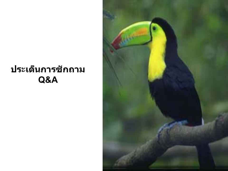 ประเด็นการซักถาม Q&A