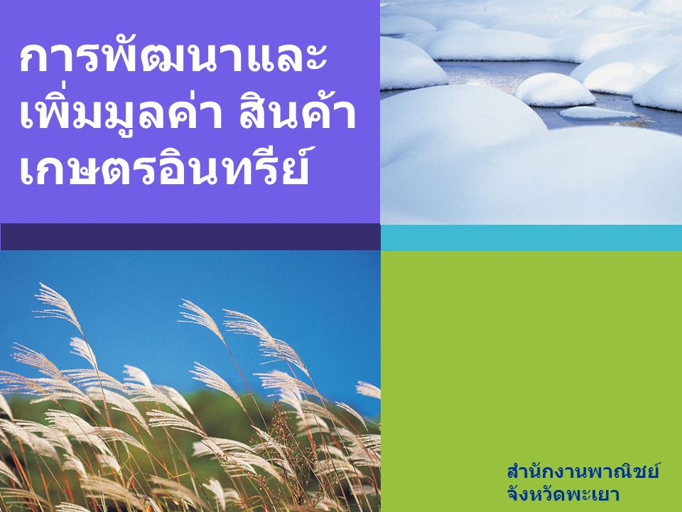 การพัฒนาและเพิ่มมูลค่า สินค้าเกษตรอินทรีย์
