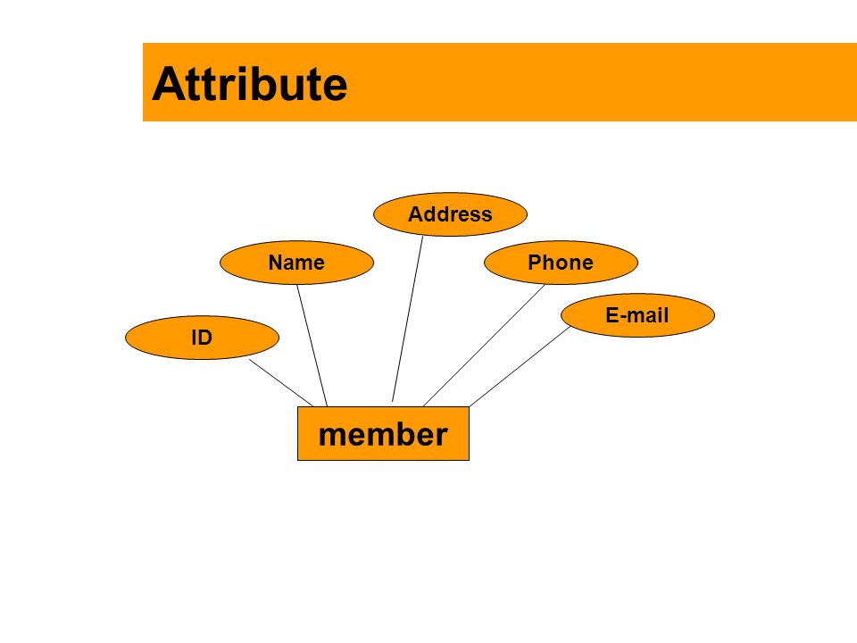 Attribute Address Name Phone E-mail ID member