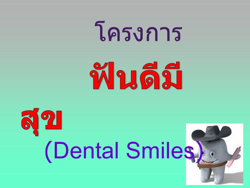 โครงการ ฟันดีมีสุข (Dental Smiles)