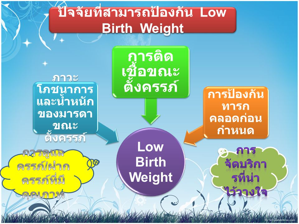 ปัจจัยที่สามารถป้องกัน Low Birth Weight