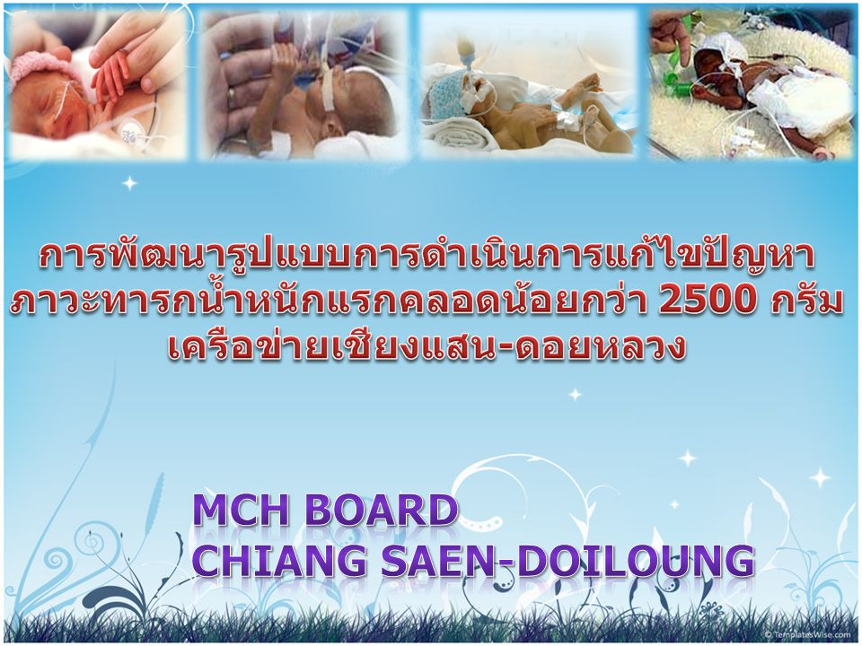 MCH BOARD Chiang Saen-Doiloung