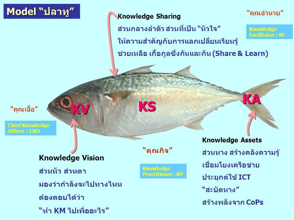 KA KS KV Model ปลาทู คุณกิจ Knowledge Vision ส่วนหัว ส่วนตา