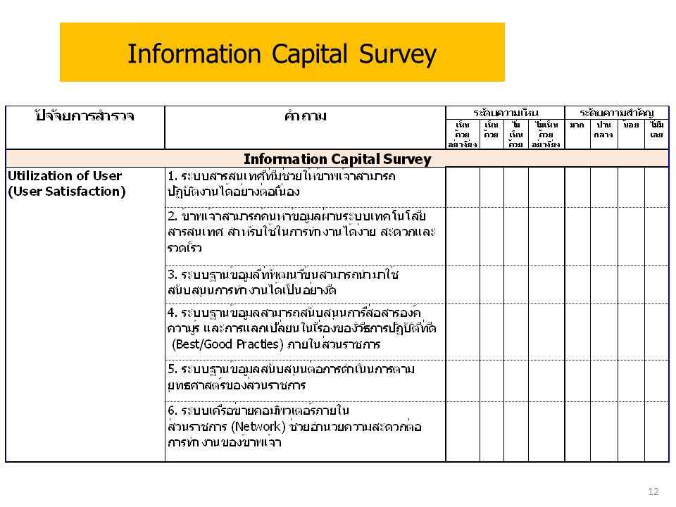 Information Capital Survey