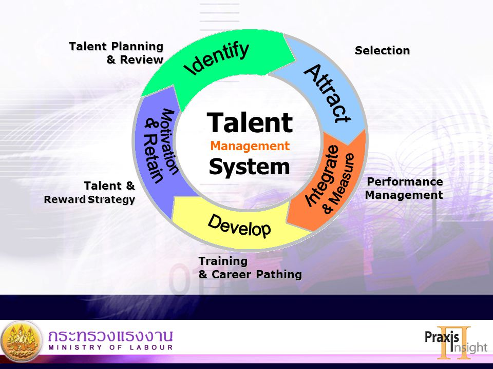 Talent Identify Attract Develop System Motivation & Retain Integrate